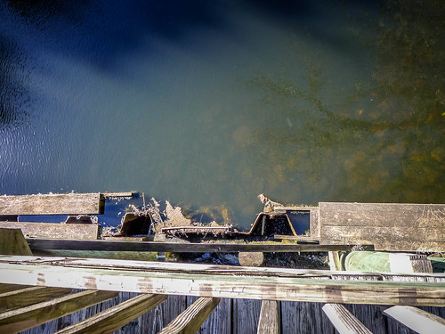 Old Santee Canal Park-131