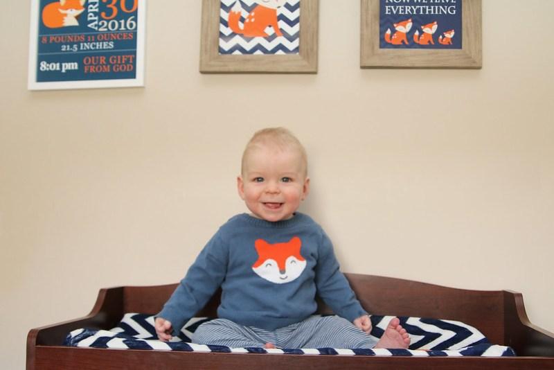 Little Mr. Fox