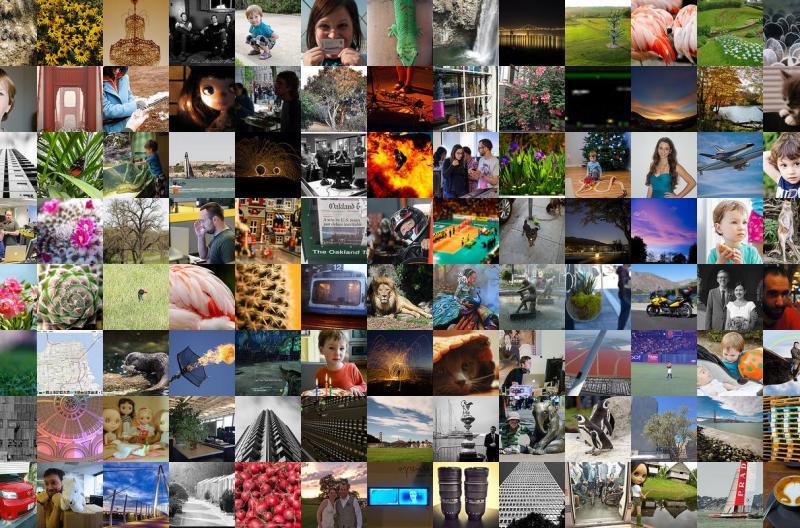sampling of images used in taste test