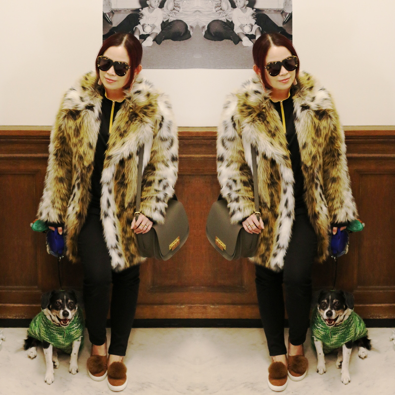 beagle-dog-leopard-coat-pom-pom-sneakers-karen-walker-sunglasses-11