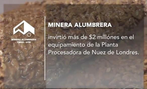 Planta procesadora de Nuez en Londres, Catamarca. Minera Alumbrera