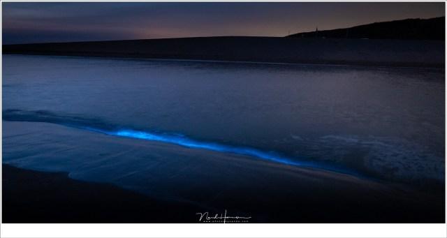 En dan... na middernacht zien we de zeevonk oplichten in de kleine golven. (24mm | ISO6400 | f/4 | 1 sec)