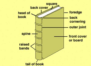 Book Diagram #1 Outside | Illustrated Book Diagram in Gif