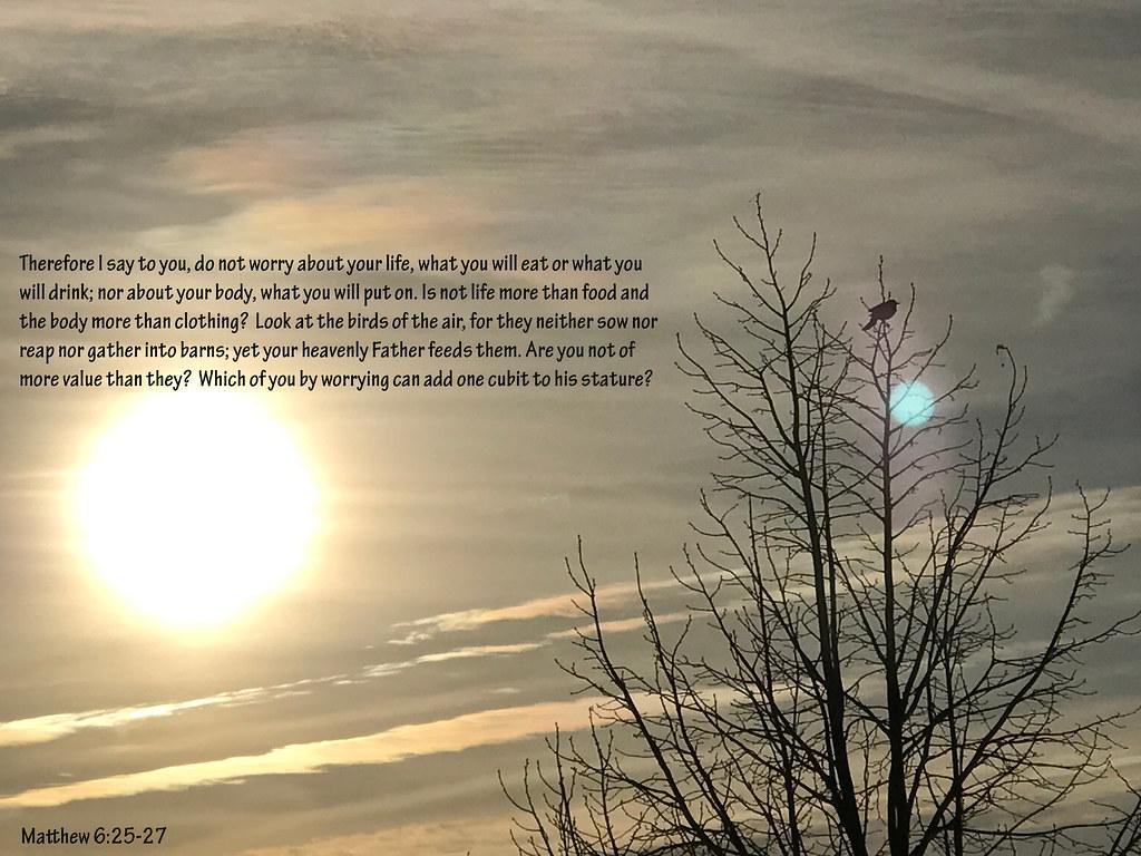 Matthew 6 25 27