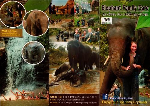 Elephant Family Care Chiang Mai Thailand Brochure 1