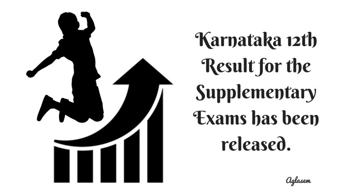 Karnataka 2nd PUC Supplementary Result 2018