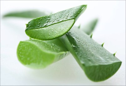 Aloe Vera for Skincare Tres Spa