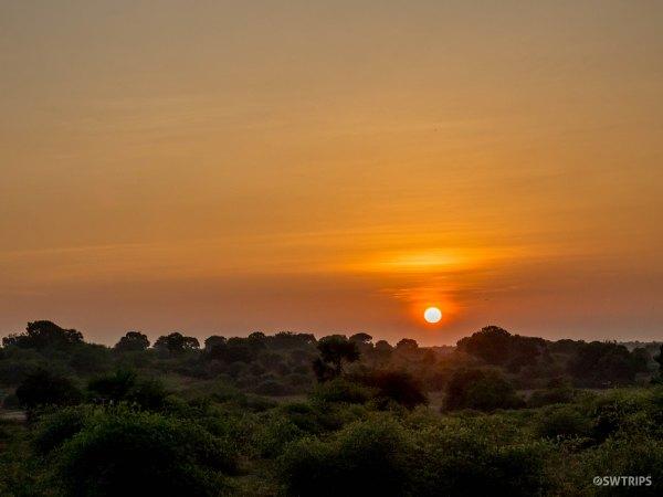 Sunrise in Yala - Yala, Sri Lanka.jpg