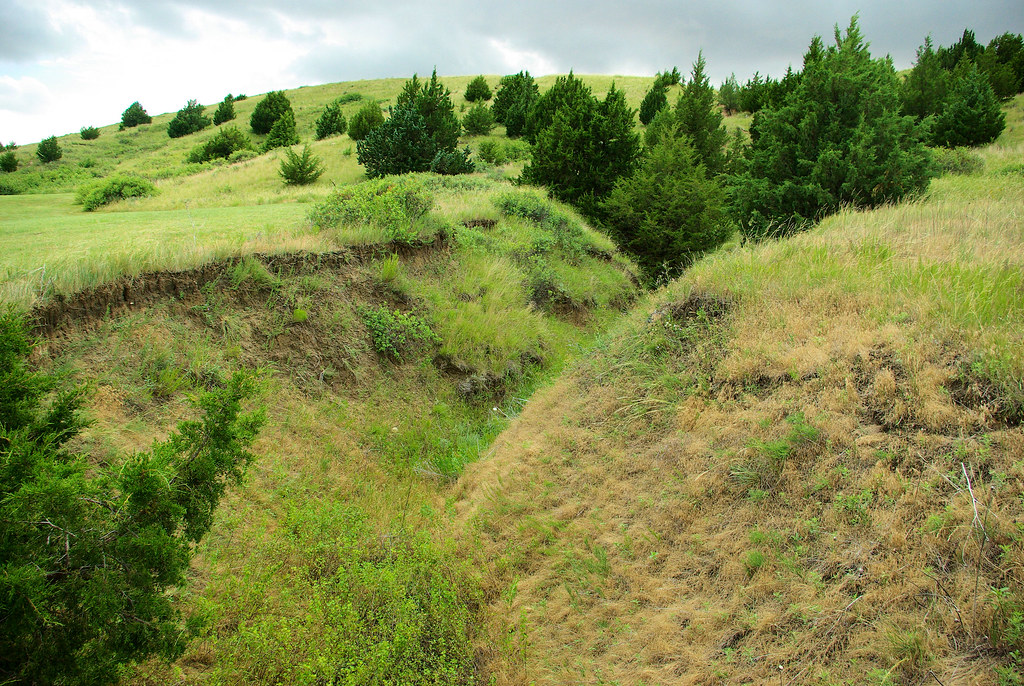 This ravine on Windlass Hill eroded from the trace left by Oregon/California trail traffic. Ash Hollow State Historical Park, Nebraska