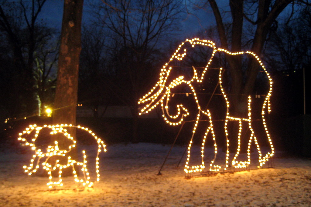 Memphis Zoo Lights Dates