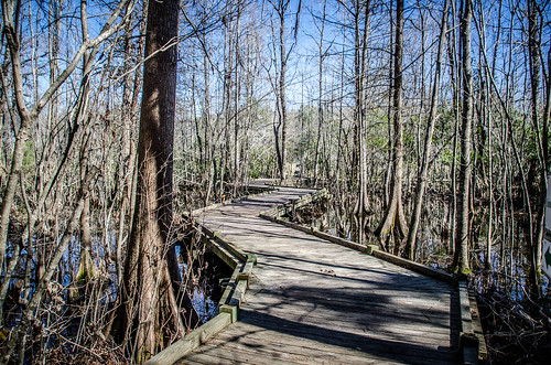Old Santee Canal Park-6