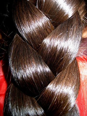 Braid Close Up Chotlo Flickr