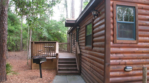 Our Cabin - Peacock Pass #2808