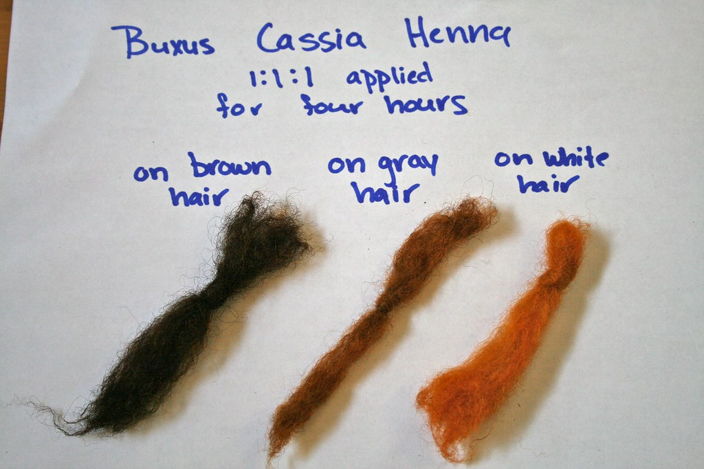 Buxus Cassia Henna This Is A Test Of Henna Buxus And