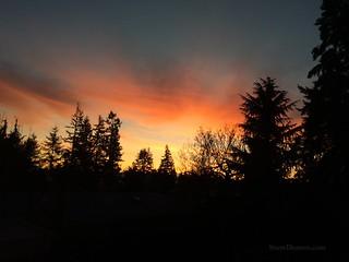 20170113 - Sunrise
