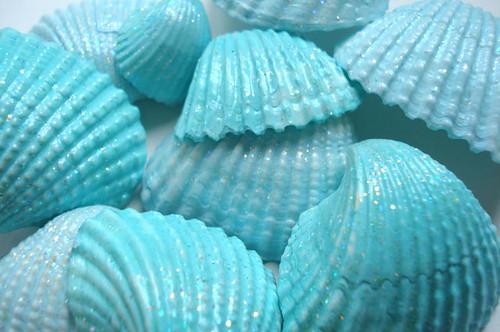 Aqua Seashells Shabby Seashells Blogged At Www