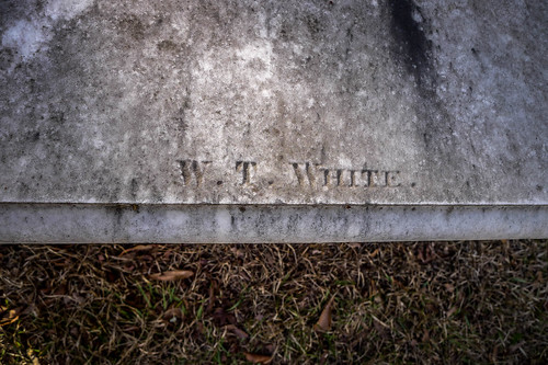 Francis Marion Grave at Belle Isle-022