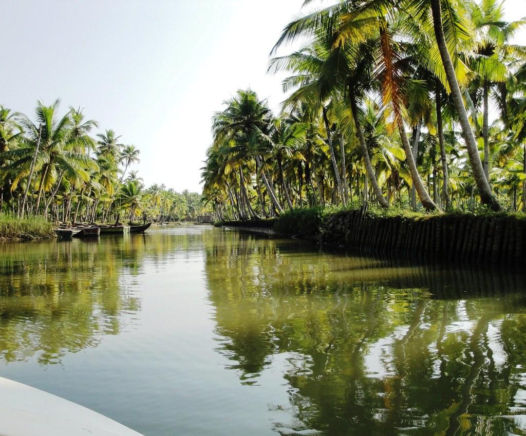Poovar Backwaters Neyyar River Kerala The Kerala