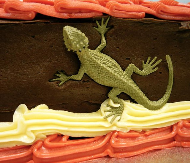 Lizard Birthday Cake Main Course California Flickr