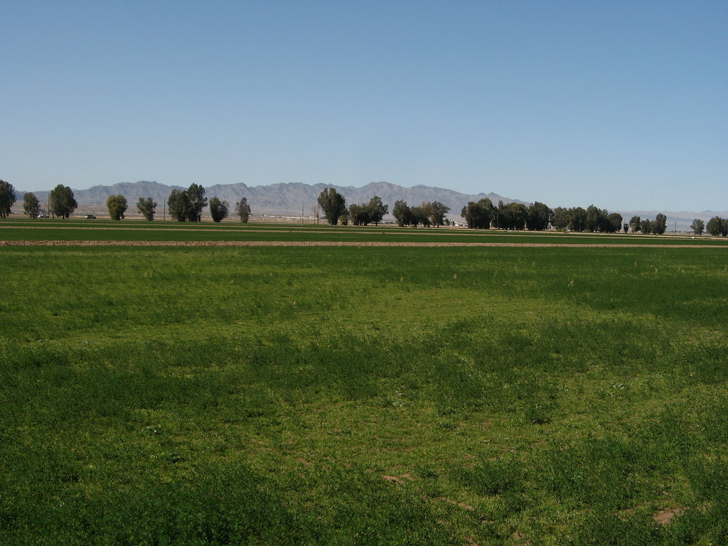 Road Map California And Nevada