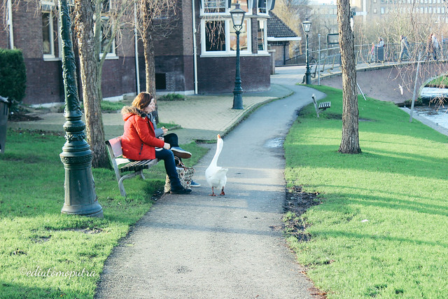 couple and goose.jpg