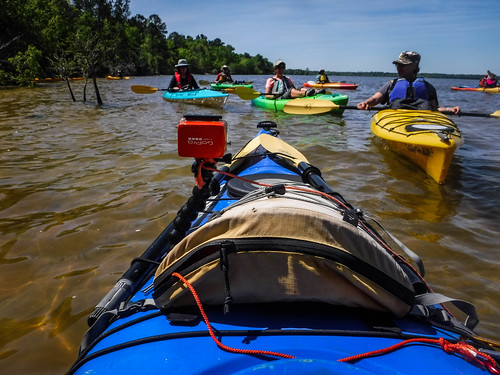 Paddle to Church Island with the Tri-County Blueways Paddlers-010