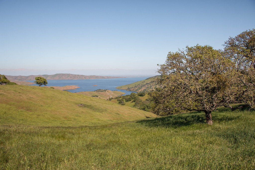 04.02. Pacheco State Park