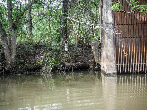 Saluda River at Pelzer-16