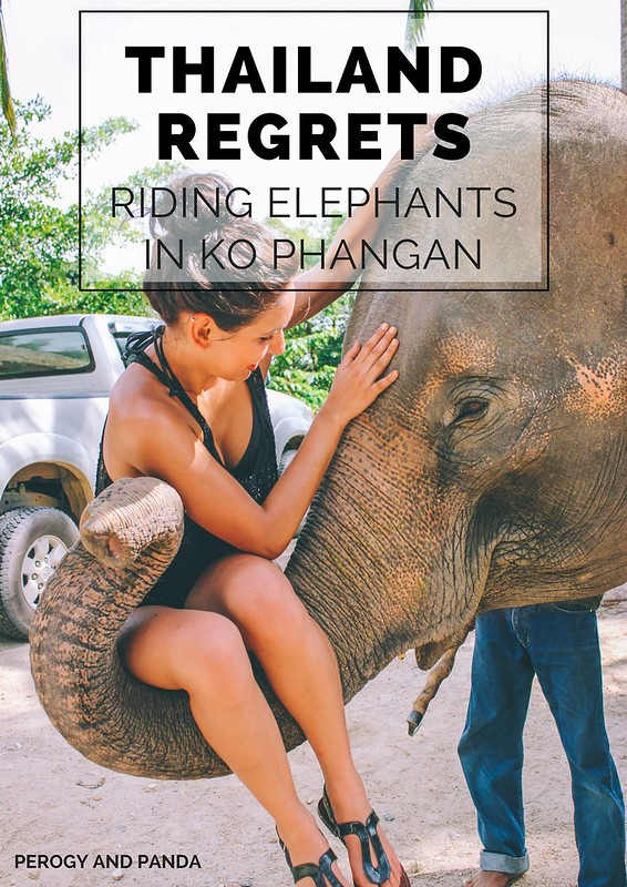 Thailand Regrets- Riding Elephants in Ko Phangan