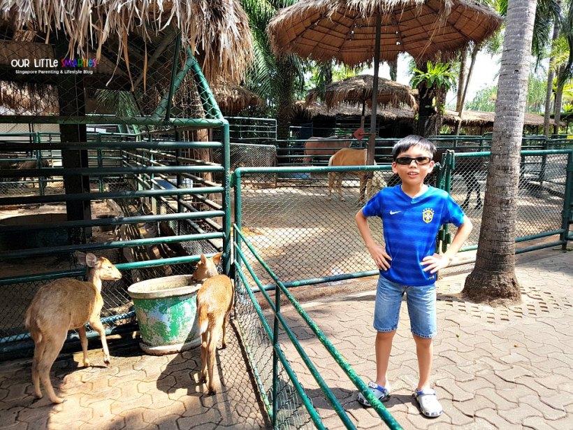 Nong Nooch Mini Zoo