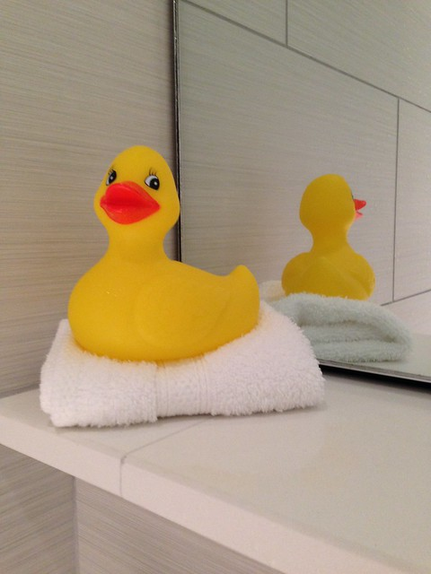Yellow Rubber Ducky in bathroom at Lexington KY 21c Museum Hotel