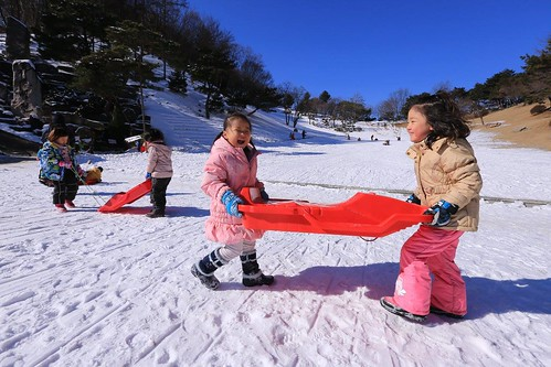 Two children joyfully go to sled down the Lawn Sanctuary in Wolmyeongdong once again