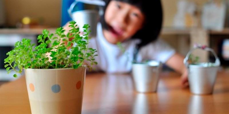 【專欄】看見大世界:從種植中孕育責任心(2017.03)