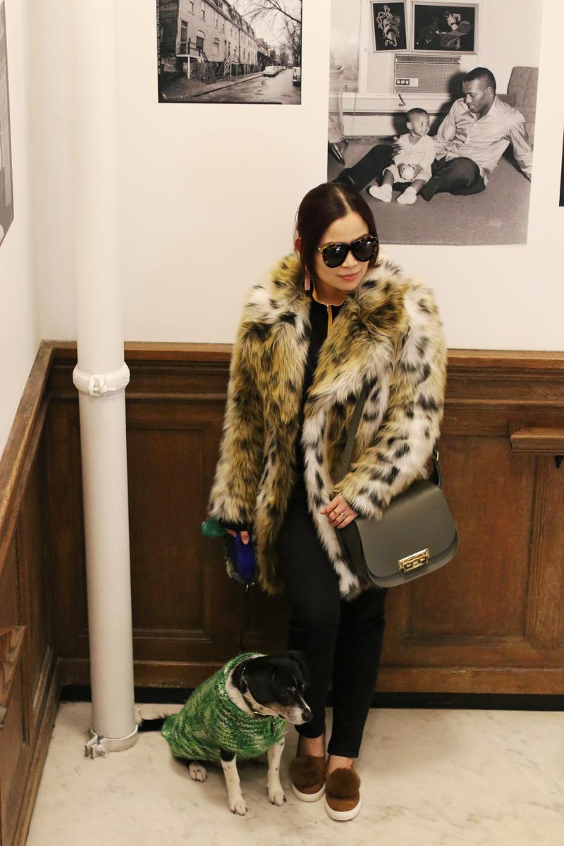 beagle-dog-leopard-coat-pom-pom-sneakers-zac-posen-bag-3