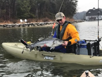Man holding Striped Bass in Kayak