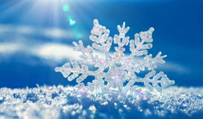 flocon-de-neige-31