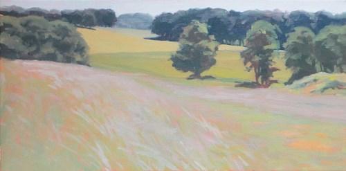 Fields North of Petoskey by Margie Guyot