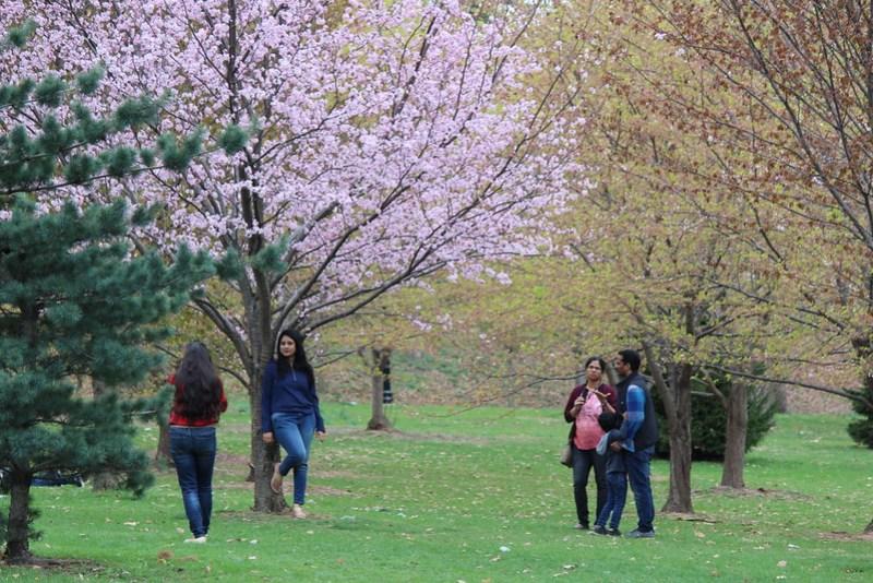 Branch Brook Park