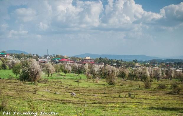 Sidhpur-Zen Valley (22)