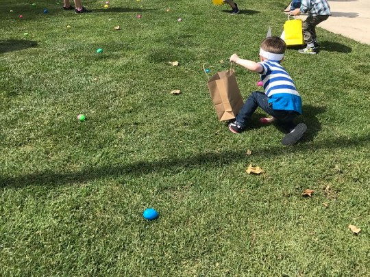 diving for eggs