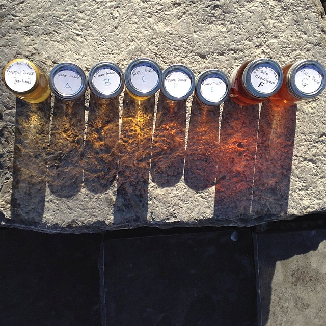One bottle from every batch this sugaring season. Refraction in action.