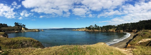 Whaler's Cove Panoramic
