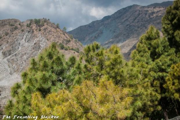 Sidhpur trek (2)