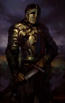 Half Elf Male Fighter Fantasy Art And Portraits