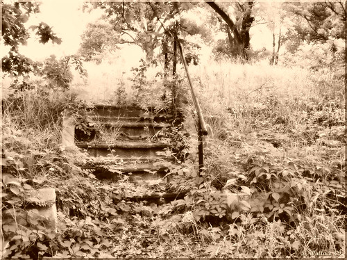 Steps to Yesterday - Sepia 2007 (2D)