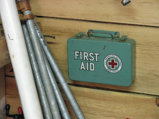 The American National Red Cross First Aid Kit