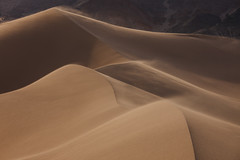 Windy Day on Death Valley Dunes