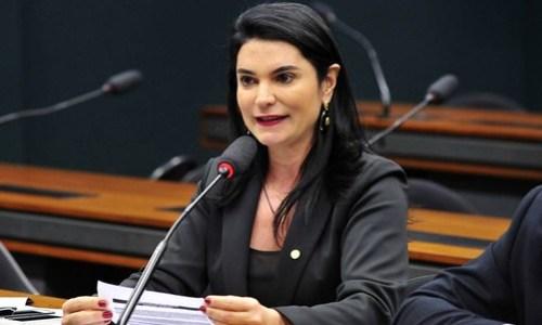 Os 9 deputados do Pará financiados pela JBS, segundo delação premiada, simone morgado