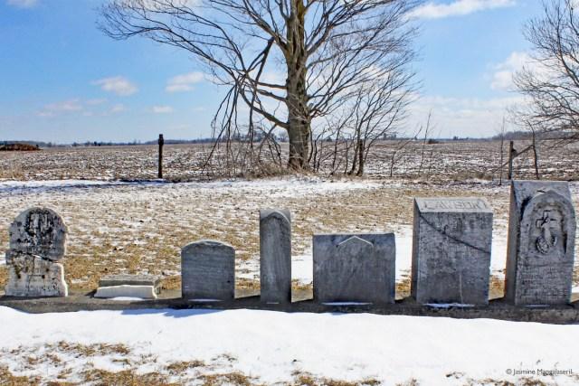 Queen's Bush Settlement headstones: African British Methodist-Episcopal Cemetery (2017)