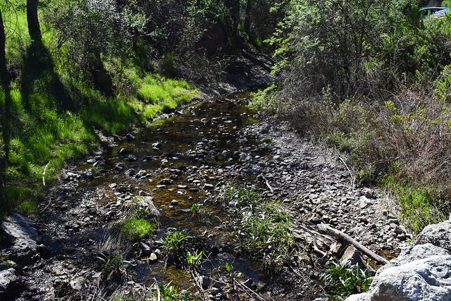 Creek In Pinnacles National Park